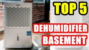 Best Dehumidifier for Basement | Top 5 Dehumidifiers for Basement 2020 - SteMir