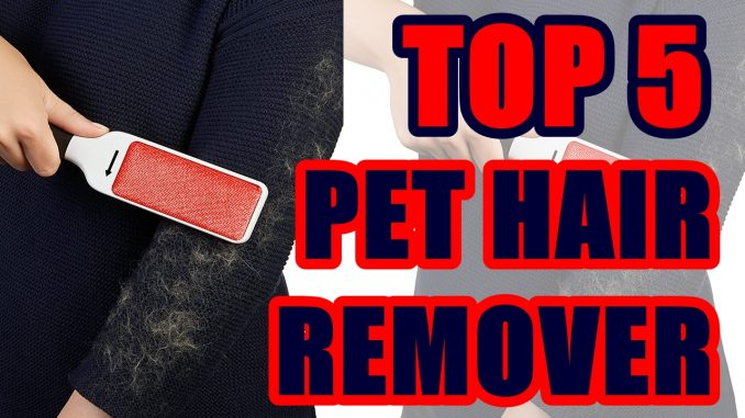 Best Pet Hair Remover for Clothes 2020 Top 5 Pet Hair Remover 2020