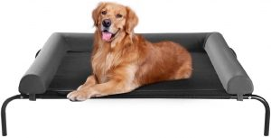 TOP 5: Best Elevated Dog Bed for Large Dog 2021 | with Breathable Mesh