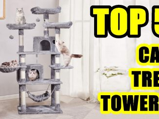 TOP 5: Best Cat Tree Tower on Amazon 2021 | Cats Activity Towers